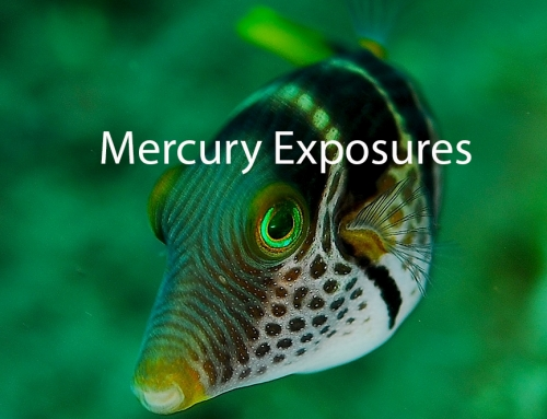 Mercury (Hg): Exposure Routes and Health Effects