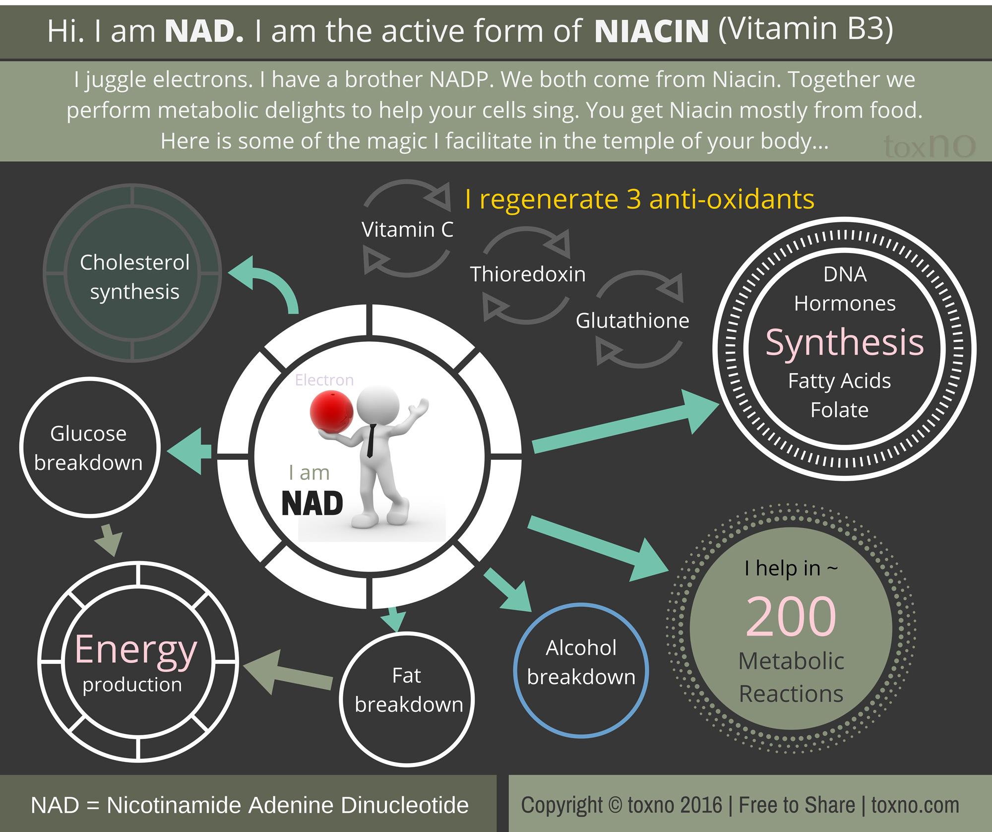 Niacin2000