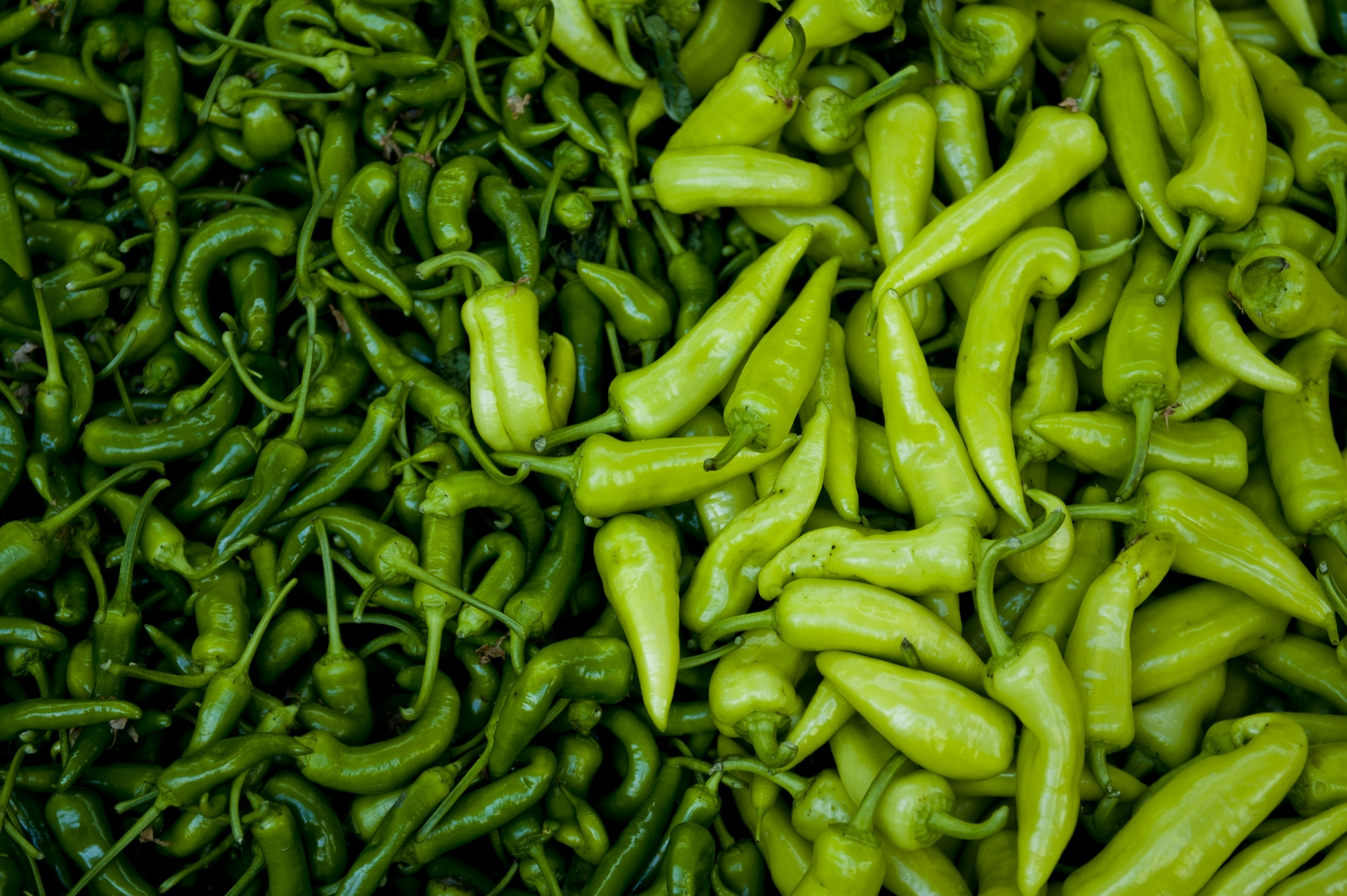 fresh-peppers-619132