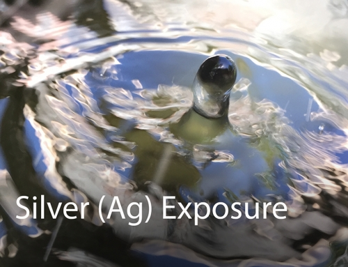 Silver (Ag): Exposure Routes and Health Effects